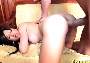 Latina tgirl doggystyled after teasing guy